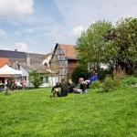 Garten_AlfterBewegt2015_48